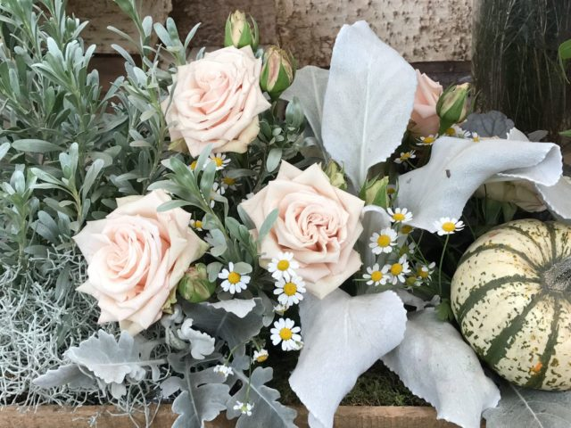 Flower Arrangement in Box with pale pink roses and pumpkins