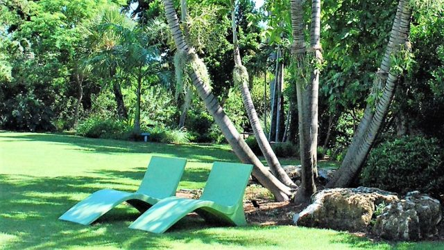Sunchairs Miami Beach Botanical Garden with view on the lawn surrounded by Palms